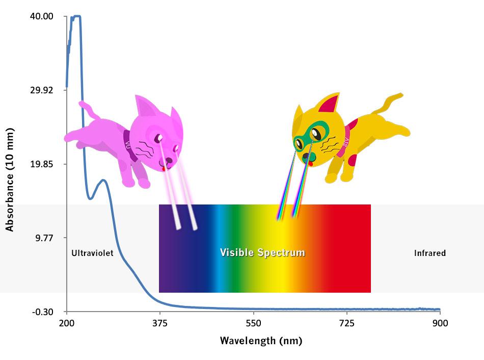 How-does-a-UV-Vis-spectrophotometer-work-implen-nanophotometer-UV-Vis-nanodrop-alternative